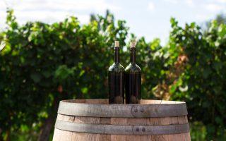 Wine for beef bourguignon